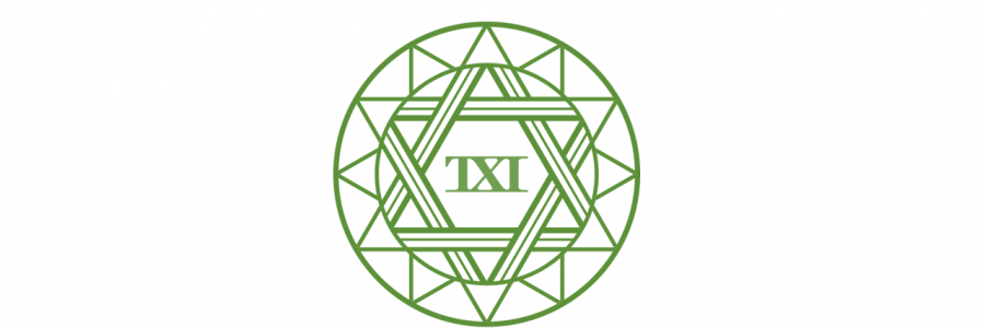 TXI Eco 台以環能
